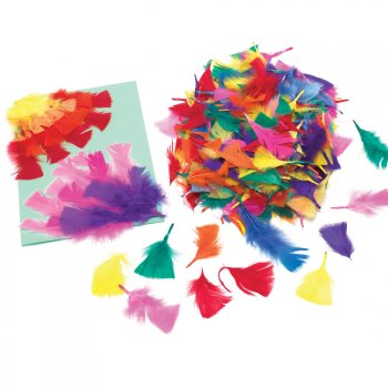 Mixed Coloured Feathers - Pack of 300