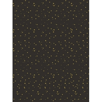 Decopatch Paper 778 Texture - Half Sheet - Black/Gold Stars