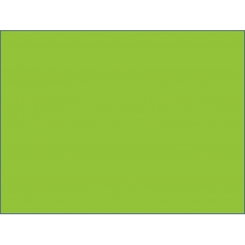 Parakeet Green A4 160gsm Card 20 PACK