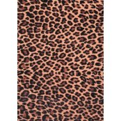 Decopatch Paper 207 - Half Sheet -  Leopard Print