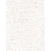 Decopatch Paper 444 - Half Sheet - White & Gold Cracked
