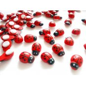 Ladybird Wooden Stickers - 30 Pack