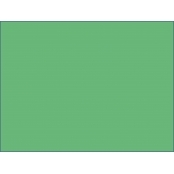 Warbler Green A4 160gsm Card 10 PACK
