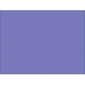 Plover Purple A4 160gsm Card 20 PACK