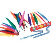 Pack Of 25 Large Indian Feathers
