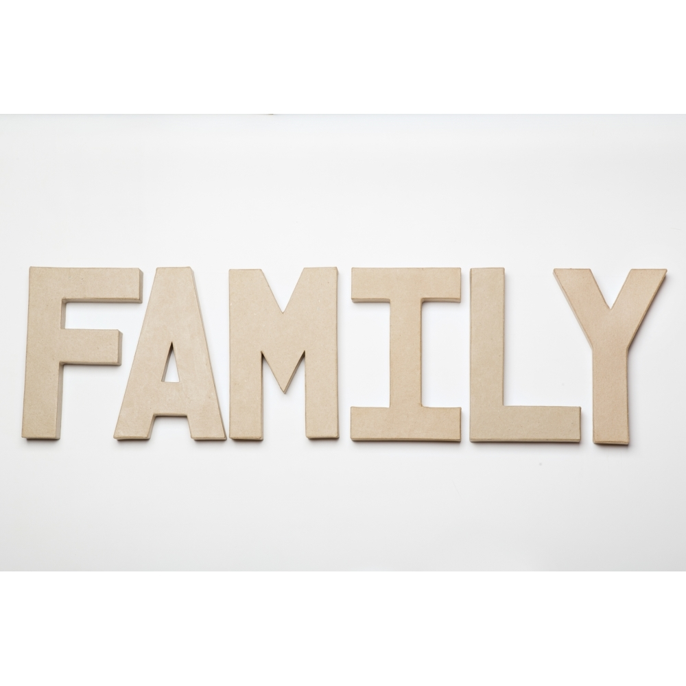 Paper mache family 8 inch letters family paper mache for Mache letters